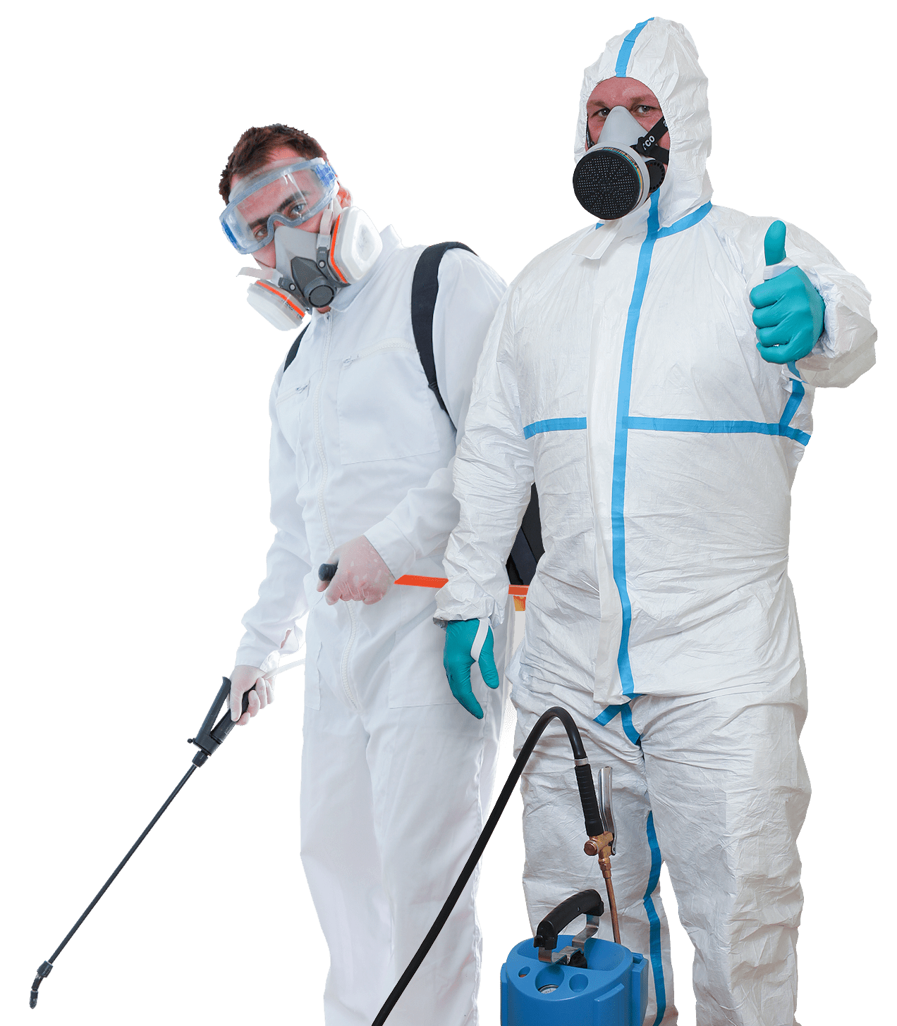 Completely different Methods to Management Pests in a Dwelling