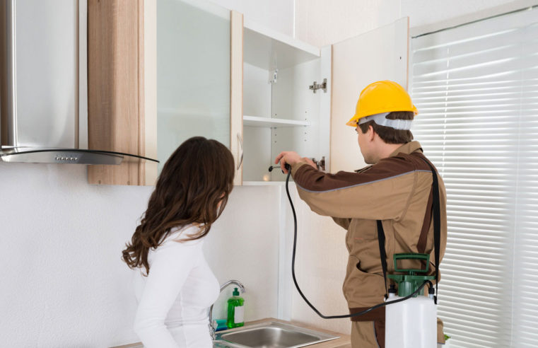 How to Avail Best Pest Control Services?