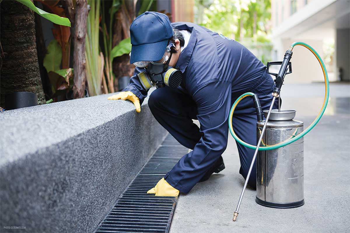 Significance of Natural Pest Management