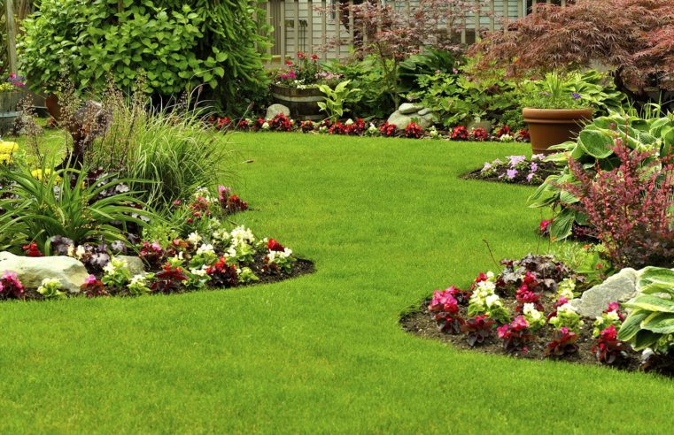 Vital Tips On Set up Of Artificial Grass In San Diego