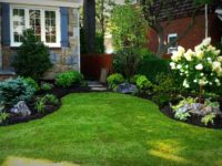 Why Installing Synthetic Grass In Your San Diego Home Is Beneficial