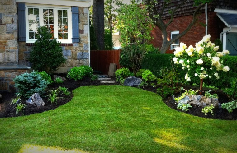 Why Putting in Artificial Grass In Your San Diego Residence Is Helpful