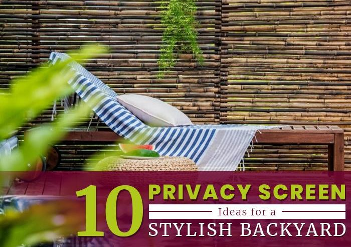 10 Privacy Screen Ideas for a Stylish Backyard