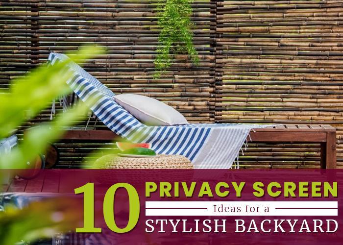 10 Privacy Screen Ideas for a Stylish Backyard