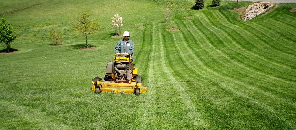 Tricks for Finding Virginia Beach Lawn Maintenance Contractors
