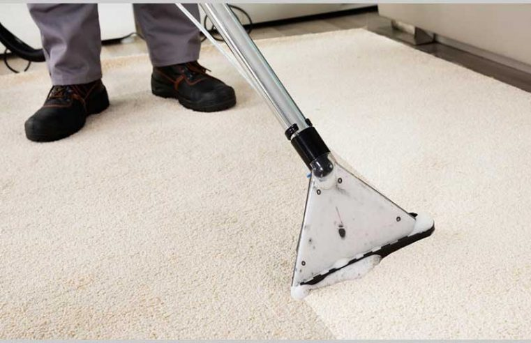 How to beat the allergies with carpet cleaning?