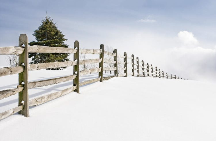 4 reasons why you should try replacing your fence in winter